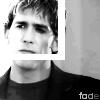 Greg - Fade