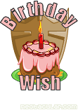 Birthday Wish